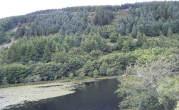 sls-glyndwrs-trail-16
