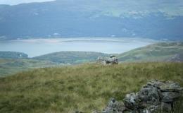 sls-glyndwrs-trail-09