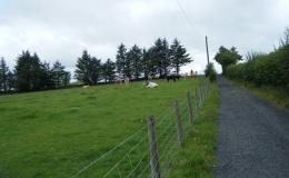 sls-glyndwrs-trail-18